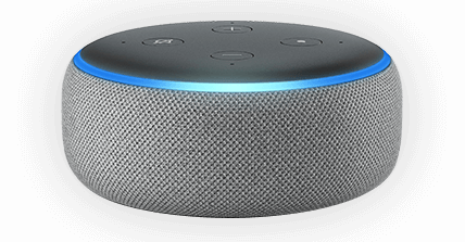 Get Alexa Skills Developed